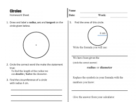 Screenshot of Circles Homework Sheet