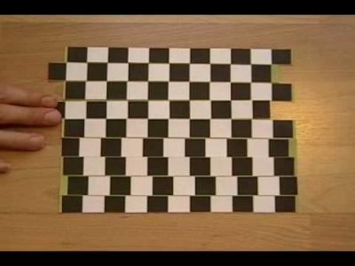Screenshot of Lines of Confusion Illusion