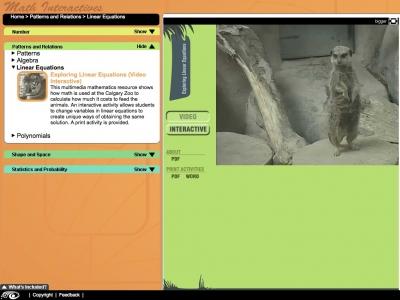 Screenshot of Exploring Linear Equations - Maths Interactives