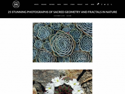 Screenshot of 25 stunning photographs of geometry and fractals in nature