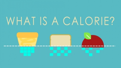 Screenshot of What is a calorie?